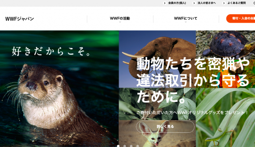 WWFジャパンの実態は?活動内容と寄付の使い道を、5分でチェック