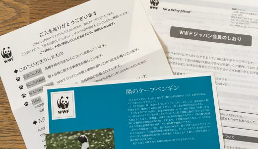 WWFへの寄付で、絶滅の危機に瀕している「野生生物」へ支援を始めた理由